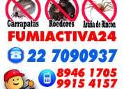 Arañas/higiene ambiental total