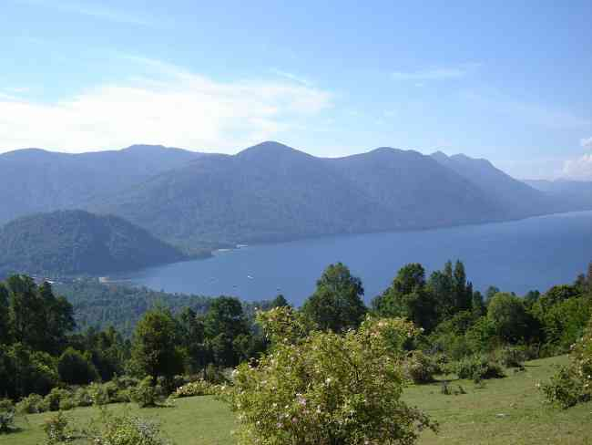 Bellísimo campo vista la lago abundante vegetación
