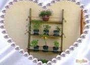 Excelente modulo plantas en casa