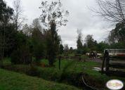 Vendo parcela 5.2 hectáreas en rupanco