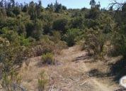 Vendo Excelente Terrenos en Papudo y Pichicuy