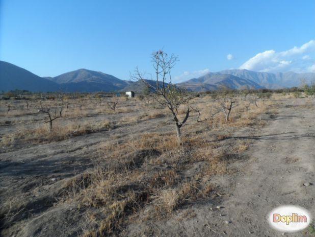 Vendo terreno de 500m2 en Putaendo