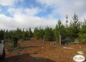 Vendo terreno de 78 hectareas