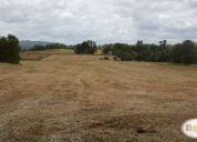 Oportunidad, parcelas de 5.000 m2 villarrica loncoche km 20