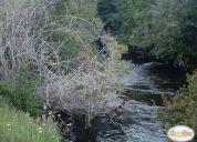 Oportunidad inversión. terreno en aguas buenas en la comuna de ancud.