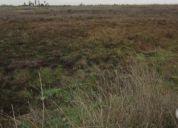 Vendo 2.5 hectáreas con 1.5 acciones de agua