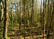 Terreno ideal proyecto turístico, entorno muy natural