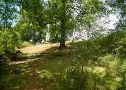 campo abundante vegetación, lindos paisajes , orilla de río