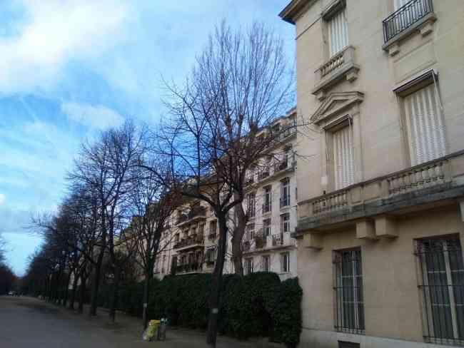 Experimentado en clase  particulares en enseñanza del francés