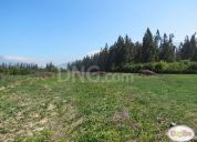 Se vende excelente parcela agrícola de 15,3 ha.