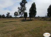Excelente parcela 3 hectáreas vendo con casa y bodega