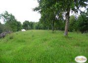 Pucon parcela vista al lago con bosque.