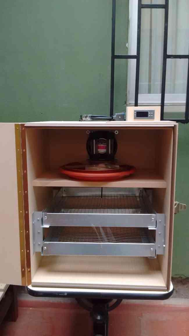 Incubadora 108 Huevos De Gallina $105.000