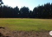 Excelente terreno 4 hectáreas en lomas verdes
