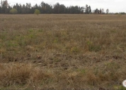 Venta de excelente parcela 20 hectareas