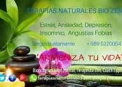Terapias naturales de sanación
