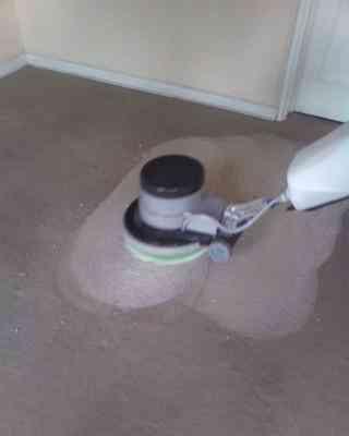 Limpieza de alfombras y piso flotante: 228859396