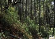 Oportunidad! 17 hectáreas, con vista al lago huillinco