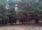terreno laguna verde