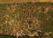 Terreno en rahuil