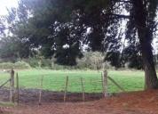Excelente Terreno 1 9 hectareas 1900 m2