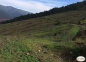 Terrenos 5.000 m2