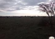 Vendo excelente terreno agrícola