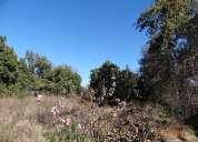 Fernandez escobar bienes raices vende propiedad amplio terreno curimon san felipe