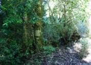 Vendo hermosa parcela con vista al valle de 1 ha, coñaripe