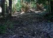 Vendo parcela de 1 ha en eco-pueblo pualafquen, con vista al valle