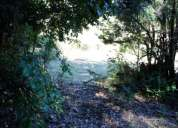 Parcela con bosque nativo y hermosa vista al valle en coñaripe