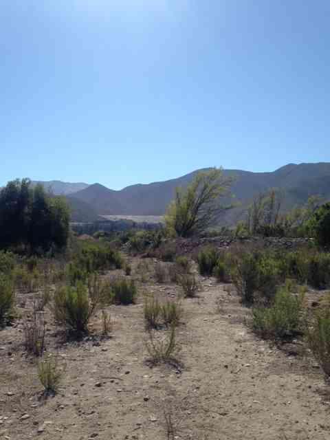 Se vende parcela en Valle del Elqui 3100 UF