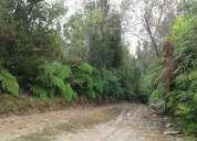 Gran oportunidad de inversion  venta de excelente predio forestal
