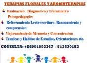 Psicopedagoga clinica  y terapias integrales