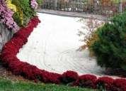 Conchuela decoraciòn de jardines
