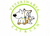 Clinica veterinaria cat y can