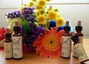 Terapia con flores de bach en concepción