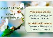 Formación en terapia floral
