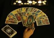 Tarot & numerología en vivo