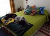Lindo departamento en ilimay, 2 dormitorios.