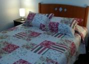arriendo diario lindo departamento 2 dormitorios