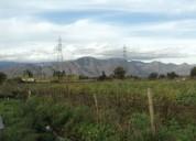Excelente terreno 5000 mts2, el olivo.
