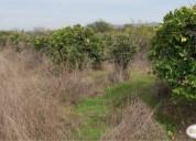 Excelente parcela camino manzanar, quillota