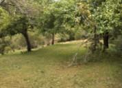 Venta terreno agrícola en cochamó. contactarse.