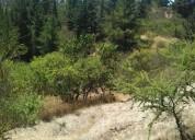 Hermosas parcelas el pinar, san enrique