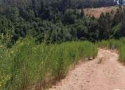 Oportunidad!. campo 16 hectáreas ubicado en rinco ii, tome