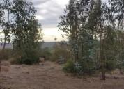 Junto al valle los olivos al costado litueche. contactarse.
