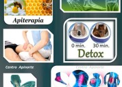 Kinesiologia apiterapia desintoxicacion