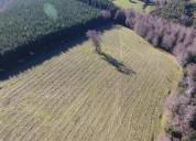22,76 hectáreas, la verdad edenicas, solo ganancia