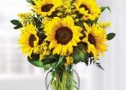 Florerías santiago de chile - flores a domicilio, envio de arreglos florales, rosas, plantas y rega